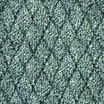 carpet_38_seamless_1024