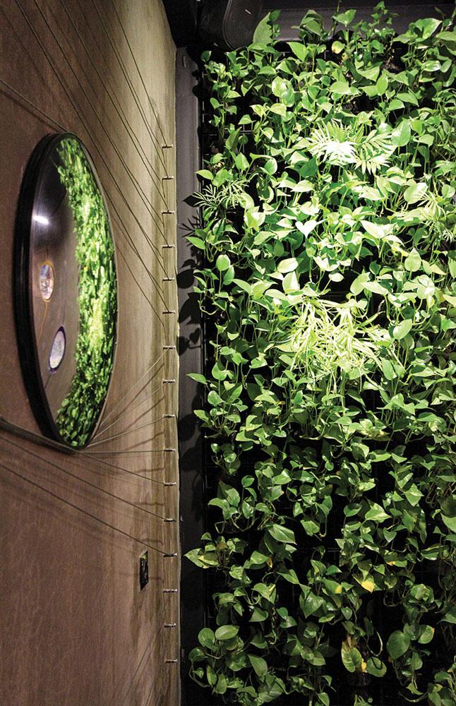طراحی داخلی رستوران پارکلند